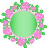 Wreath of pink peonies and green leaves in pastel colors, empty Stock Photos