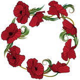 Wreath of poppies Stock Image