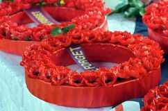 Wreath of Poppies Royalty Free Stock Photo