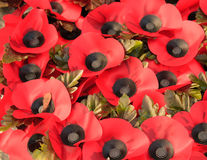 Wreath of poppies to commemorate the First World War. Stock Photography