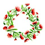 Wreath with poppies in water color Stock Photo