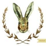 Wreath, rabbit, watercolor, hare Stock Photos