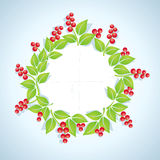 Wreath of red berries Royalty Free Stock Images