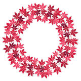 Wreath of red leaves Stock Image