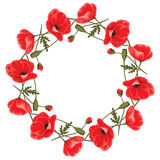 Wreath of red poppies. Bitmap picture with additional vector file Stock Photo