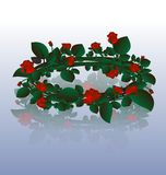 Wreath of red roses Stock Photo