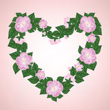 Wreath of rose Royalty Free Stock Photography