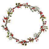 Wreath with rose hips royalty free illustration
