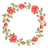 Wreath from rose Royalty Free Stock Image