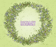 Wreath of rosemary. Floral frame Royalty Free Stock Photos