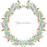 Wreath of salvia and cowberry Royalty Free Stock Images