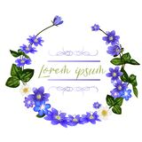 The wreath of scilla flowers. Spring flowers greeting card template. royalty free illustration