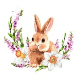 Wreath with spring flowers and small rabbit Hand drawn watercolor illustration, isolated on white background