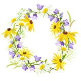 Wreath of summer wildflowers isolated Royalty Free Stock Photography