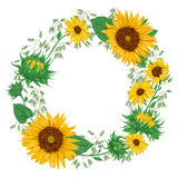 Wreath with sunflowers and oat. Rustic floral background. Royalty Free Stock Photo