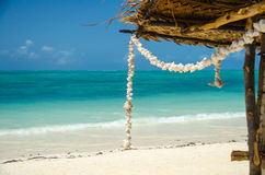 Wreath of tropical white shells in a sand beach Royalty Free Stock Image