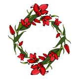 Wreath of tulips. royalty free stock photography