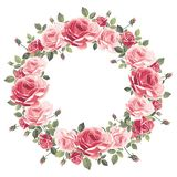 Wreath of vintage pink roses on a white background. Vector royalty free illustration