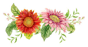 Wreath with watercolor gerbera flower. Royalty Free Stock Photography