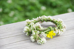 A wreath of white clovers Royalty Free Stock Photos