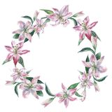 Wreath with white watercolor lilies vector illustration
