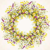 Wreath of wild flower Stock Photography