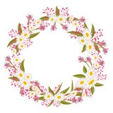 Wreath of wild flowers. Royalty Free Stock Images