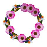 Illustration of wreath with wild rose, camomile, sage stock illustration