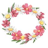 Wreath of wild summer flowers, cosmos and daisy Royalty Free Stock Images