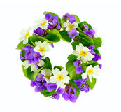 Wreath of woodland violets and primula. Royalty Free Stock Images