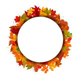 Wreath from yellow autumn leaves. Stock Image
