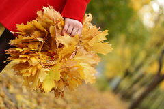 Wreath from yellow leafs Royalty Free Stock Photography