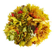 Wreath of yellow maple leaves Royalty Free Stock Photos