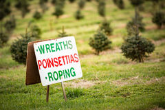 Wreaths Poinsettias Roping Sign. Roadside sign at a holiday Christmas tree farm says wreaths, poinsettias, and roping is for sale Royalty Free Stock Images