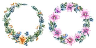 Wreaths of watercolor wildflowers royalty free illustration