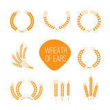 Wreaths of wheat ears Stock Image