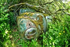 A wreck of a car overgrown with plants. The abandoned car cemetery hidden deep in the Swedish woods. Nature is slowly taking control Royalty Free Stock Images