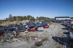 Wreck cars on a scrap yard Stock Images