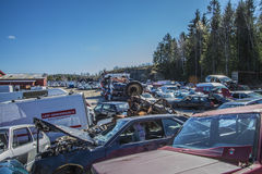 Wreck cars on a scrap yard Royalty Free Stock Photography