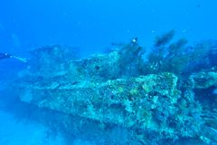 Wreck diving. In Maldives. Deep diving stock photography
