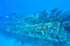 Wreck diving. In Maldives. Deep diving royalty free stock image