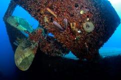 Wreck Hilma Bonaire. Wreck of the Hilma Bonaire, underwater image Royalty Free Stock Photos