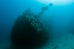 Wreck in the Red Sea Royalty Free Stock Photos