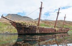 Wreck of the sailing ship Bayard, Ocean Harbour, South Georgia stock image