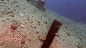 Wreck Salem Expresson on seabed underwater in Egypt. Extreme tourism on the ocean floor in the world of coral reefs, fish, sharks. Researchers of wildlife blue stock footage