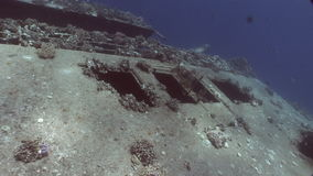 Wreck Salem Expresson on seabed underwater in Egypt. Extreme tourism on ocean floor in world of coral reefs, fish, sharks. Researchers of wildlife blue abyss stock footage