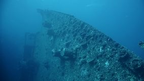 Wreck SS Thistlegorm, Red Sea, Sharm el Sheikh, Egypt stock video