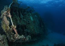 Wreck - St John's reef Egypt. Many wrecks are found around red sea reefs such as this one at St John reef, Egypt Stock Images