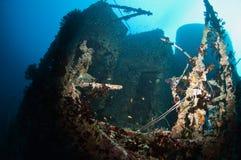 Wreck Victoria Maldives Stock Image