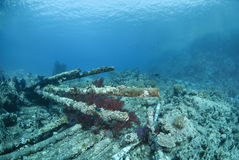 Wrecked remains of a shipwreck. Royalty Free Stock Photo